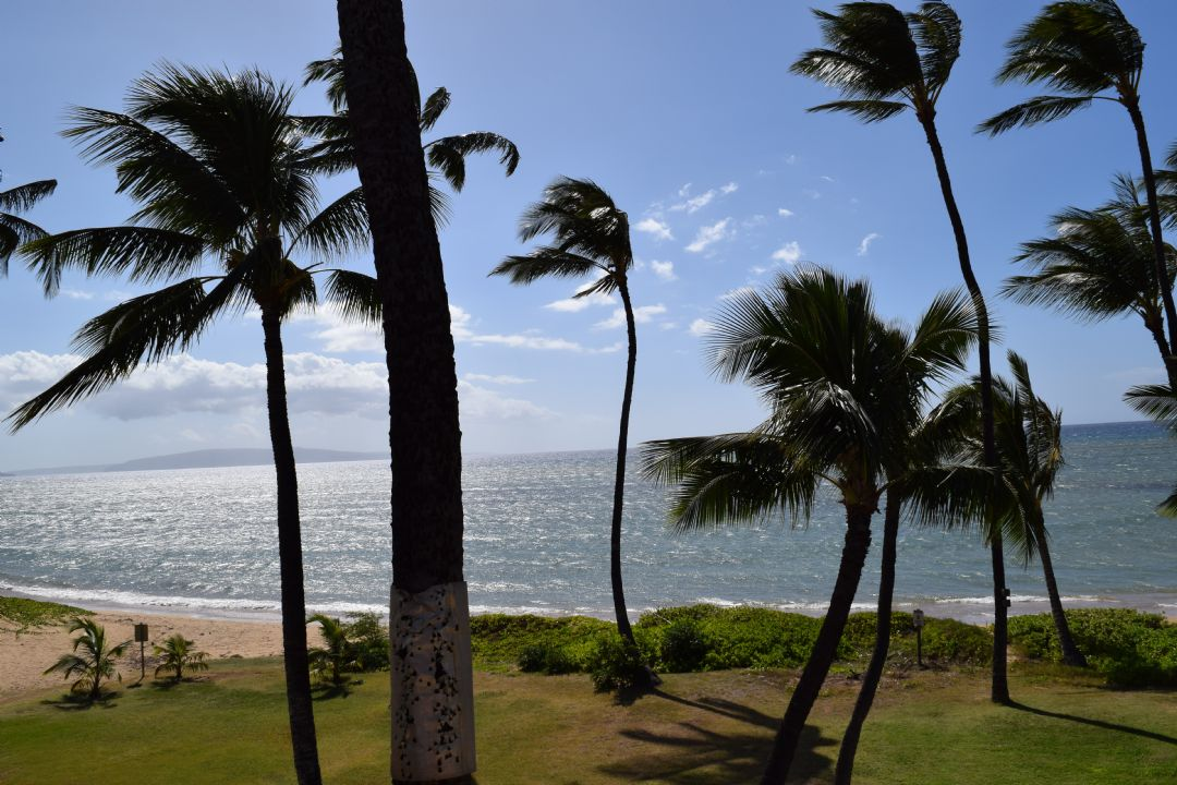 View from Lanai to Left