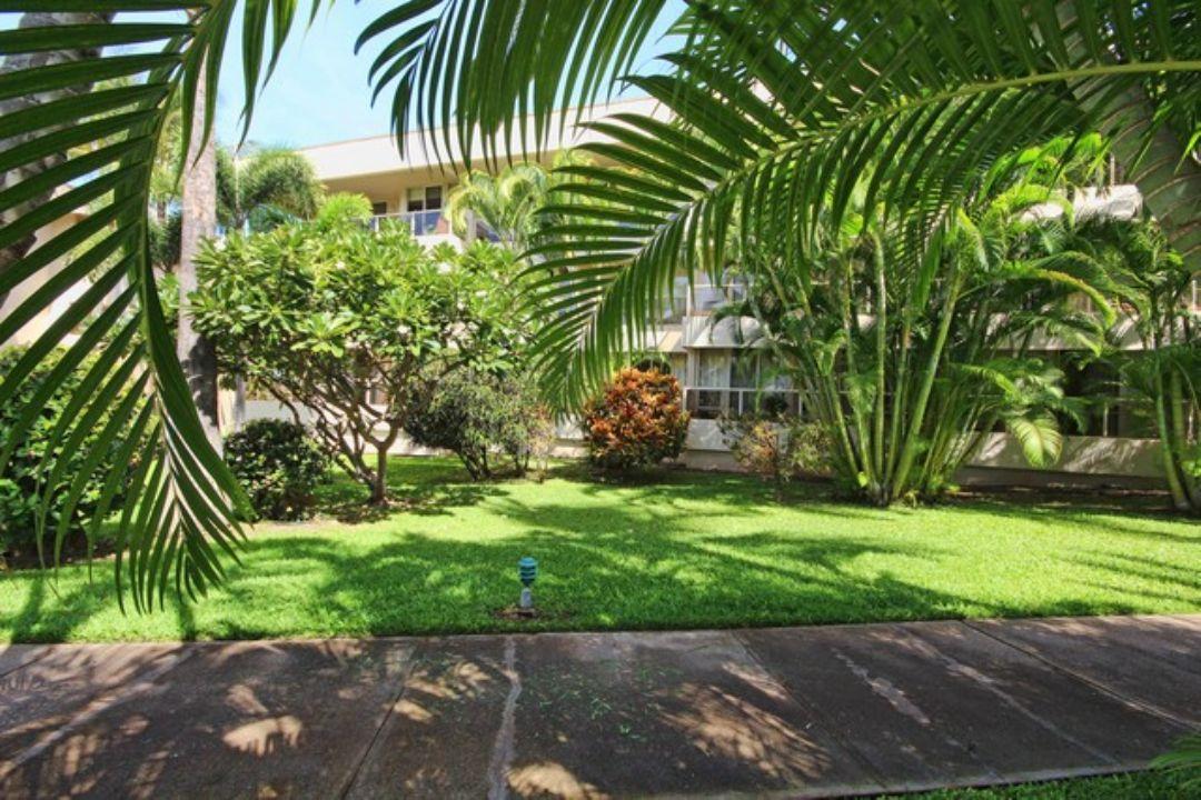 Tropical grounds at Maui Banyan