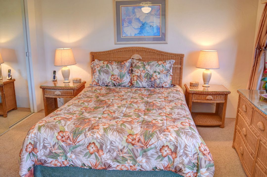 Comfortable Queen bed in Master bedroom