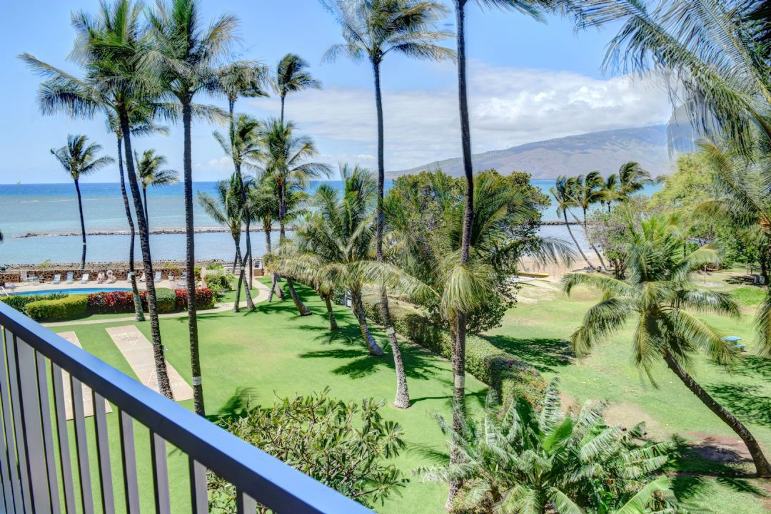 Tropical views from the lanai