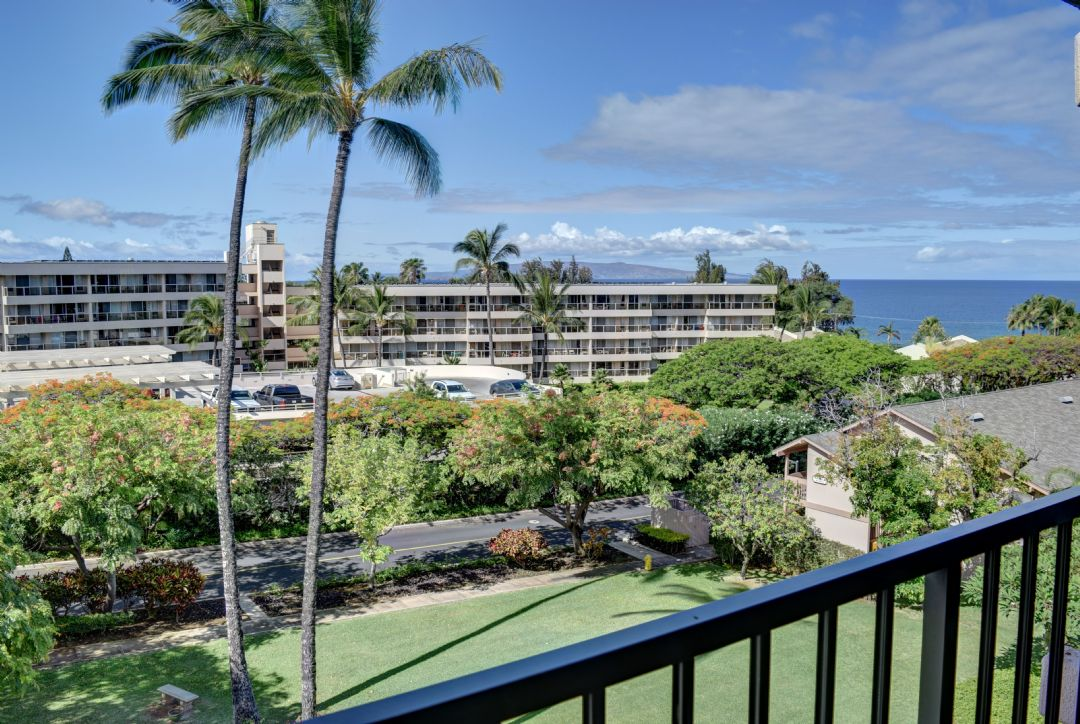 Tropical view from your spacious lanai